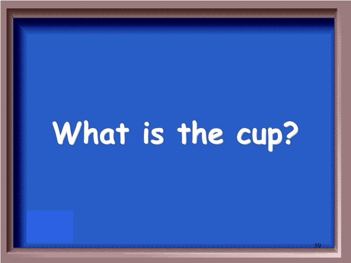 What is the cup?