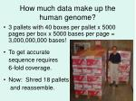 how much data make up the human genome