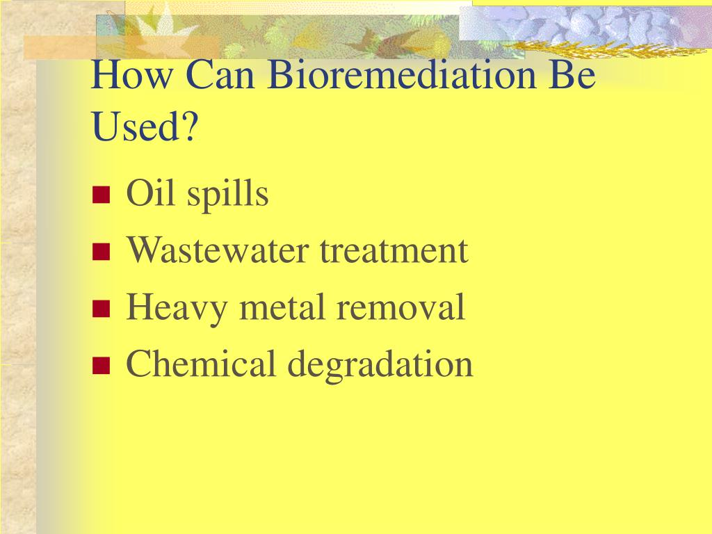 How Can Bioremediation Be Used?