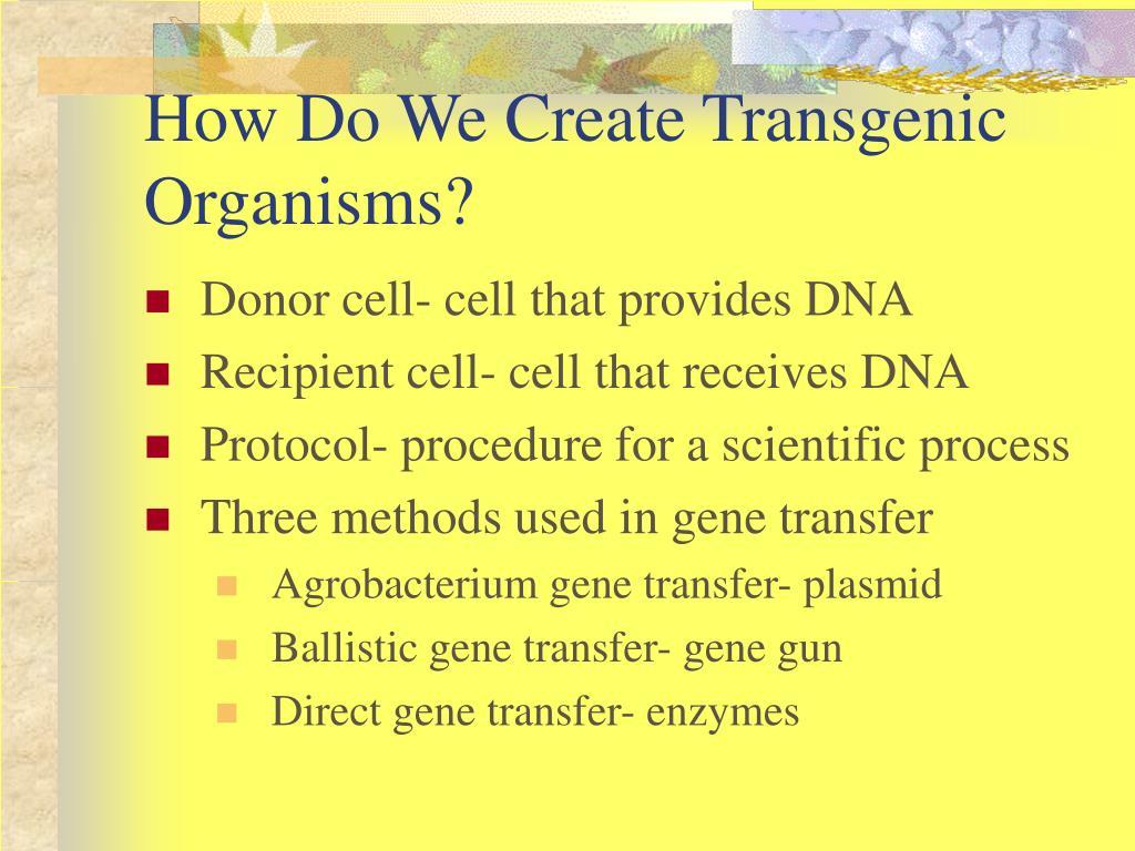 How Do We Create Transgenic Organisms?