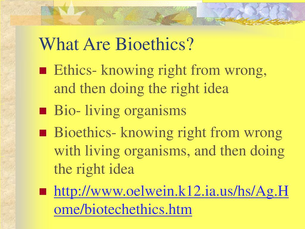 What Are Bioethics?