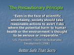 the precautionary principle44