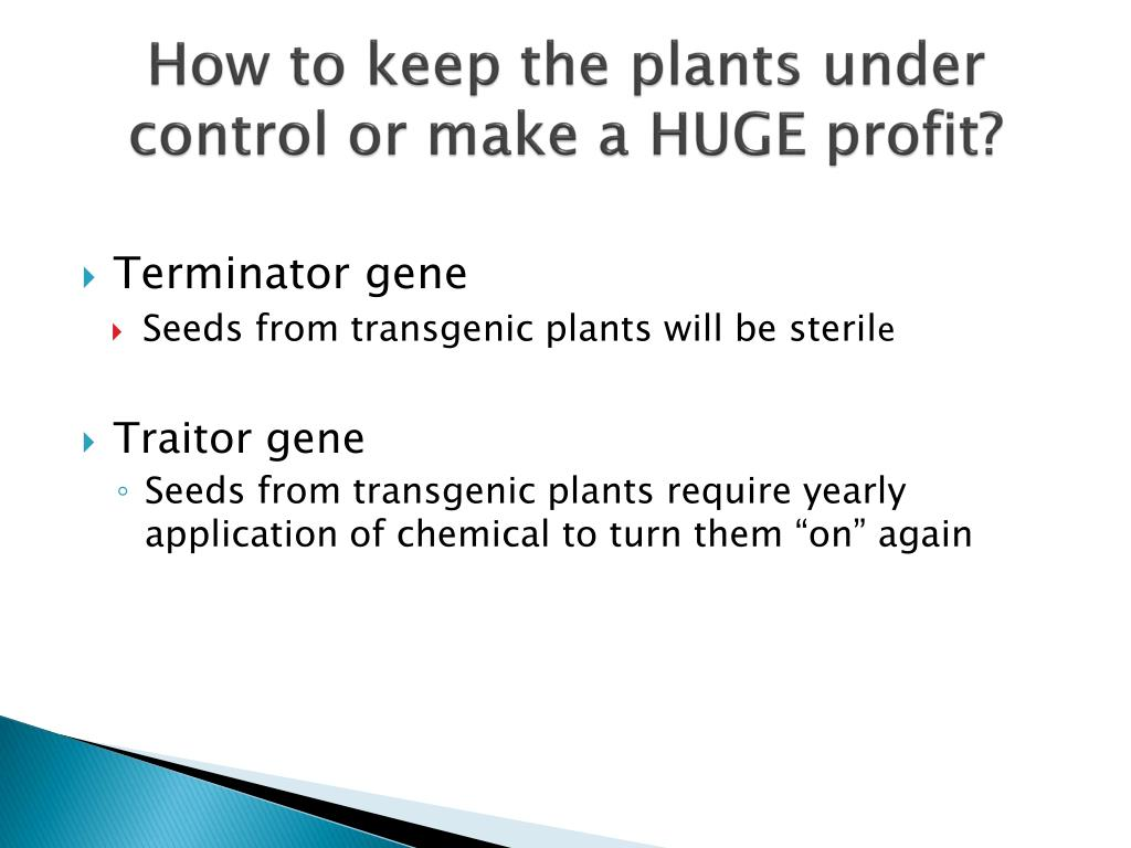 How to keep the plants under control or make a HUGE profit?