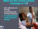 what are the current primary challenges in tb