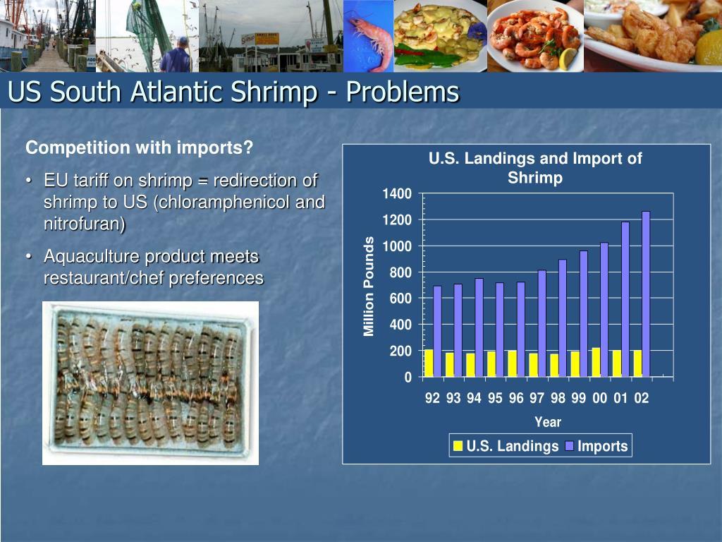 US South Atlantic Shrimp - Problems