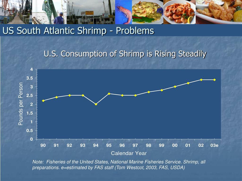 U.S. Consumption of Shrimp is Rising Steadily