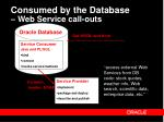 consumed by the database web service call outs