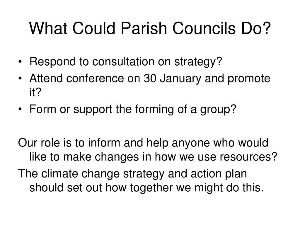 What Could Parish Councils Do?
