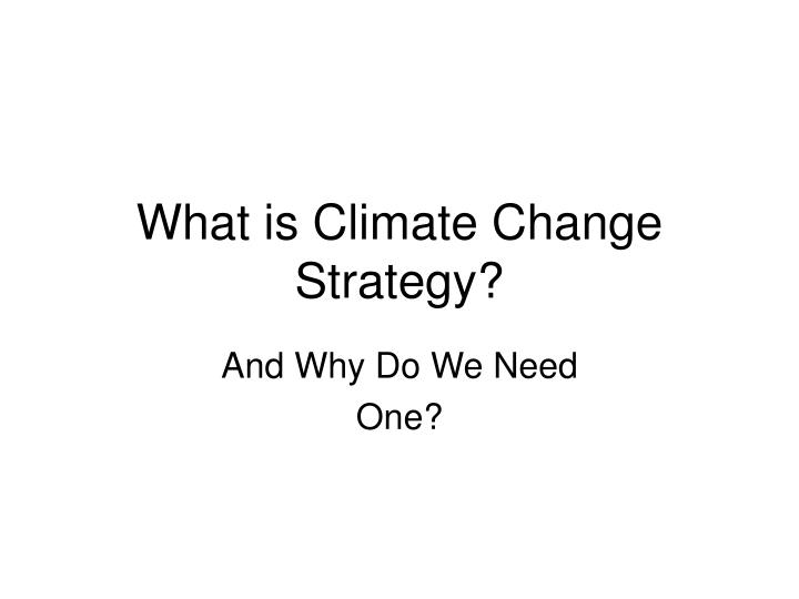 What is climate change strategy