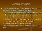 computer crime40