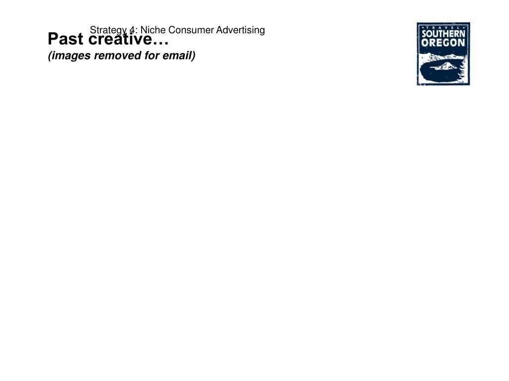 Strategy 4: Niche Consumer Advertising