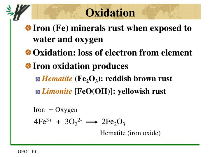 Iron (Fe) minerals rust when exposed to water and oxygen