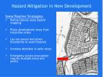hazard mitigation in new development