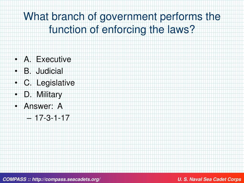 What branch of government performs the function of enforcing the laws?