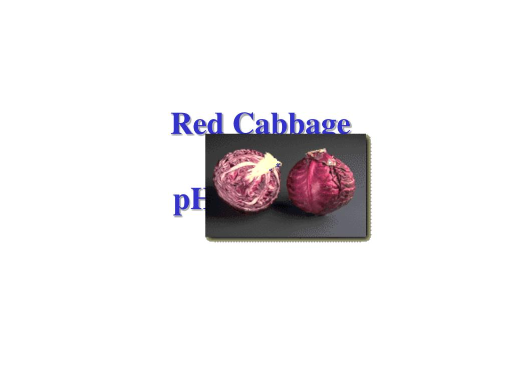 red cabbage as a ph indicator l.