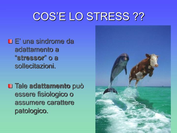 Cos e lo stress