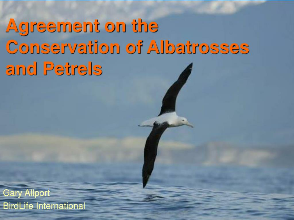 agreement on the conservation of albatrosses and petrels l.