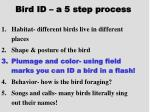 bird id a 5 step process18