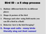 bird id a 5 step process22