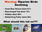 warning riparian birds declining