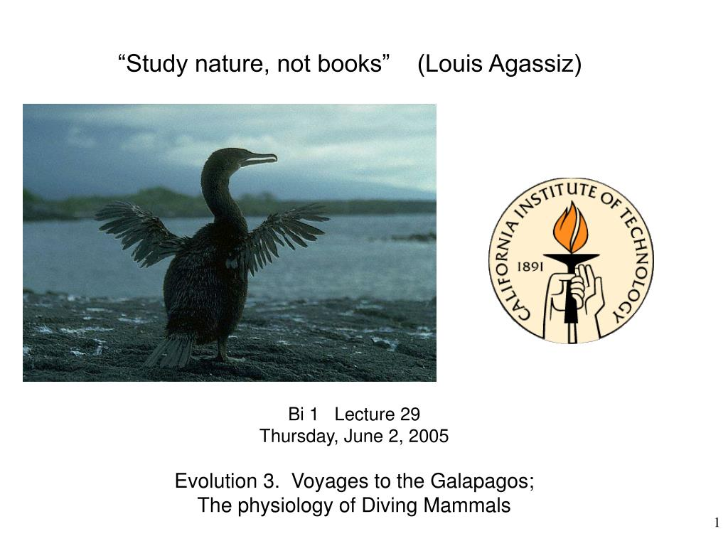 """Study nature, not books""    (Louis Agassiz)"