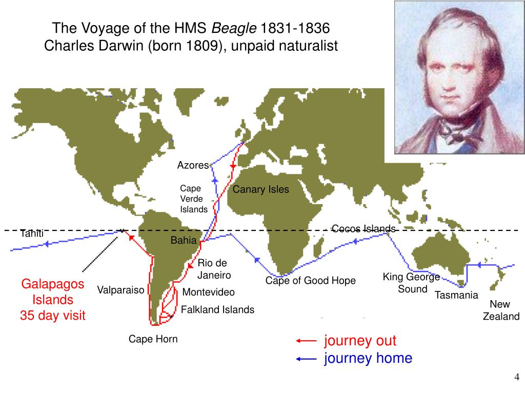 The Voyage of the HMS