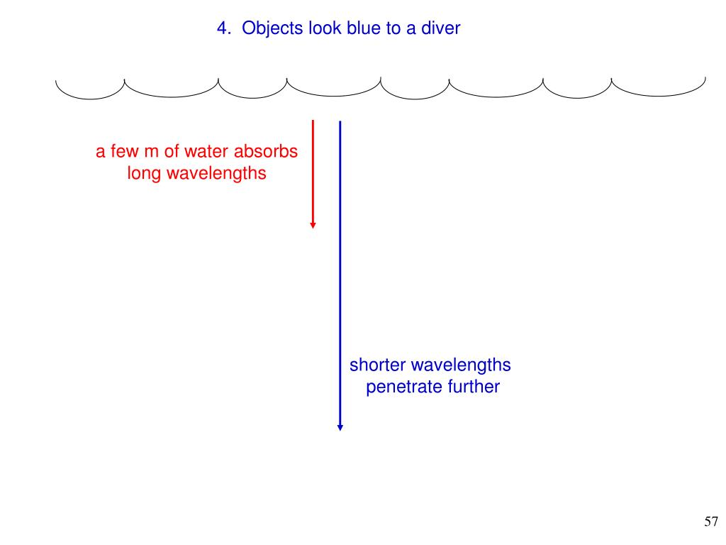 4.  Objects look blue to a diver
