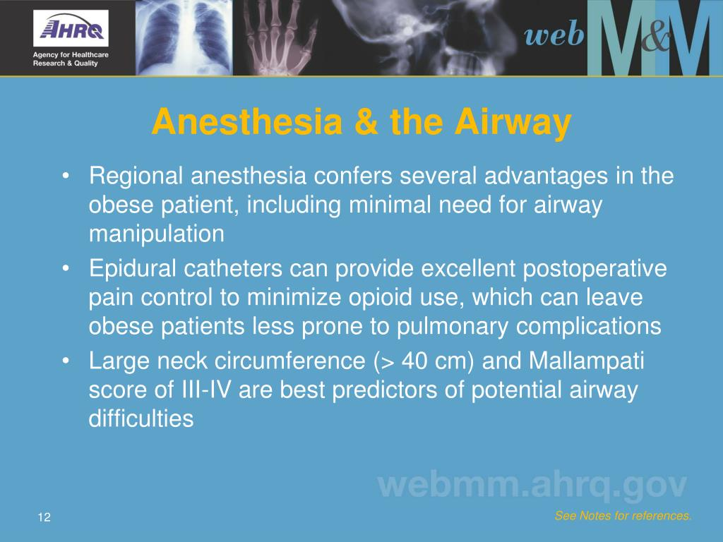 Anesthesia & the Airway