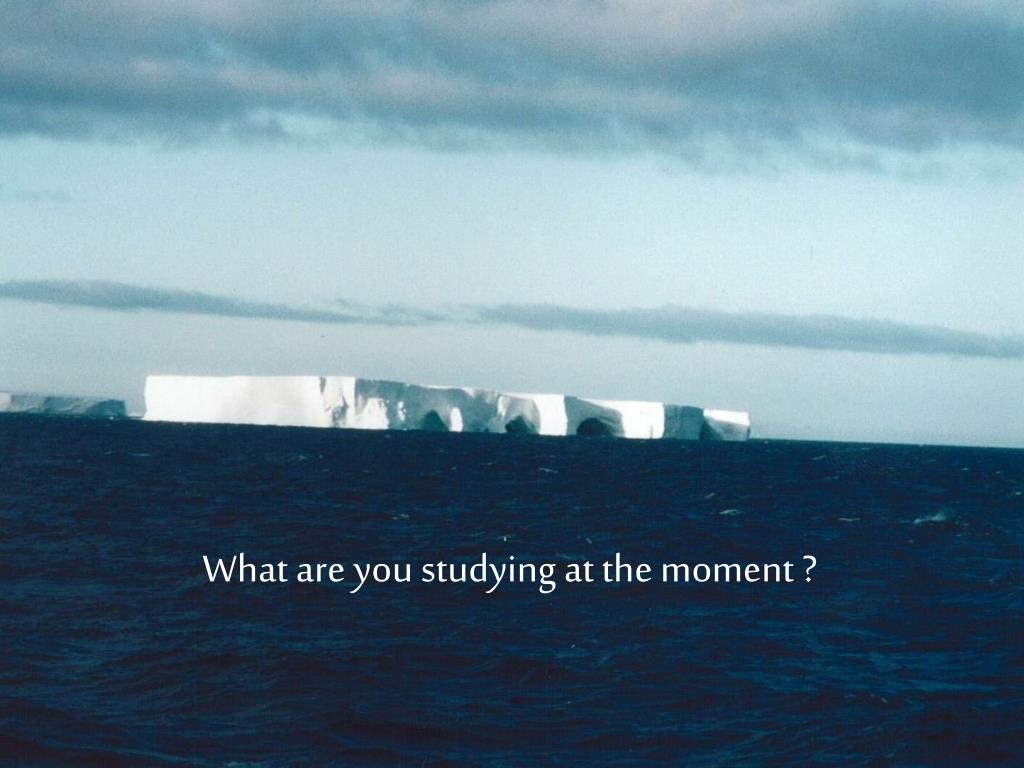 What are you studying at the moment ?