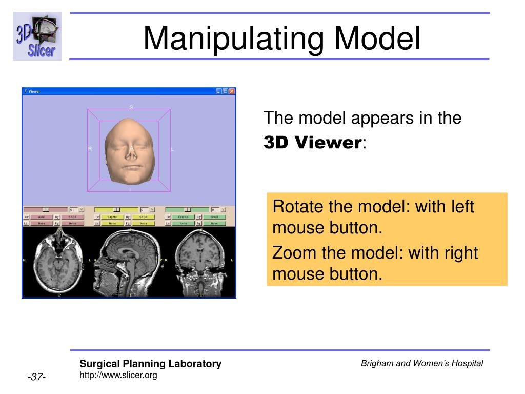 Manipulating Model