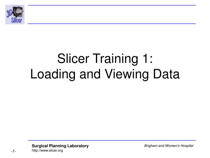 Slicer training 1 loading and viewing data