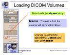 loading dicom volumes31