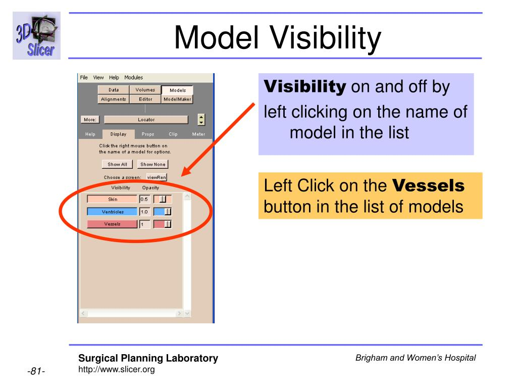 Model Visibility