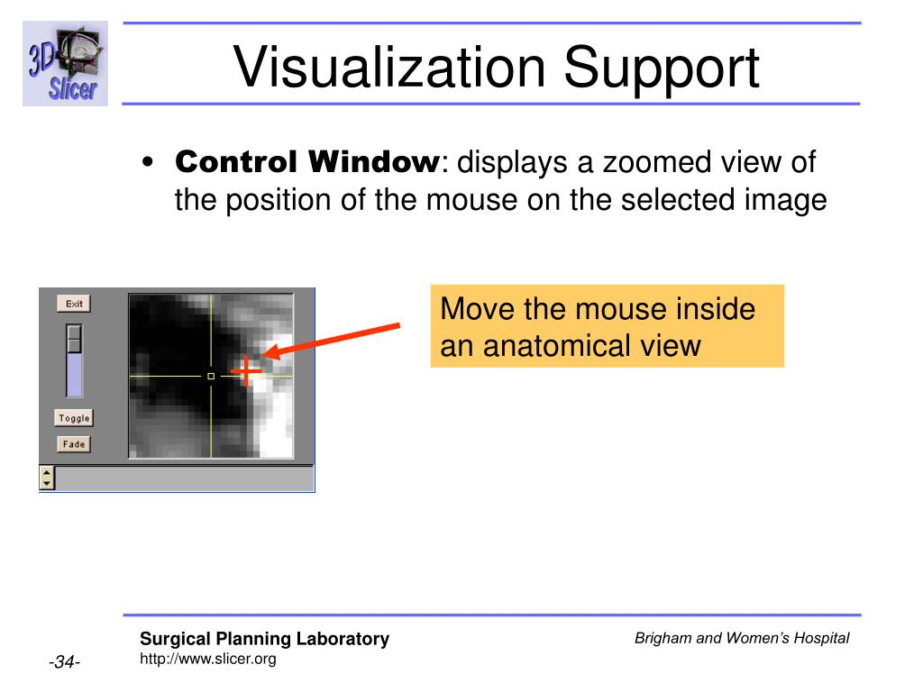 Visualization Support