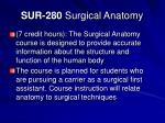 sur 280 surgical anatomy