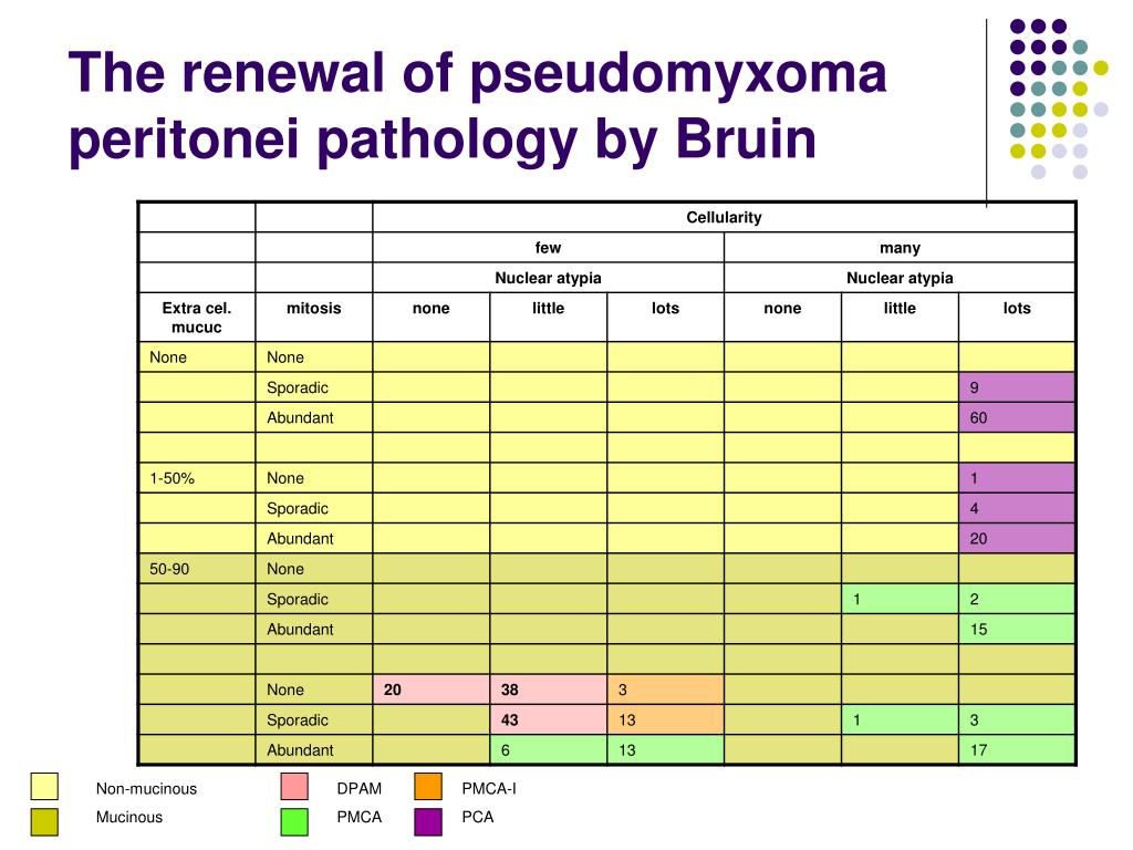The renewal of pseudomyxoma peritonei pathology by Bruin