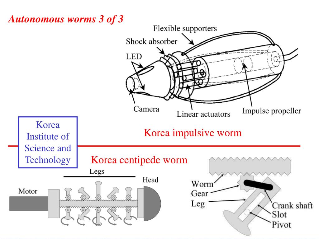 Autonomous worms 3 of 3