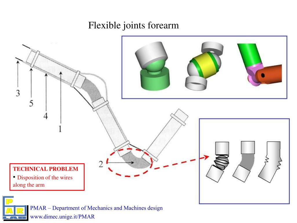 Flexible joints forearm