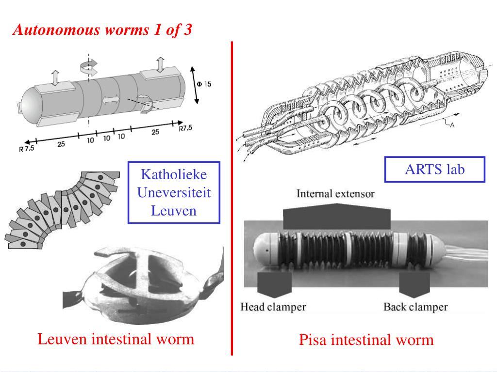 Autonomous worms 1 of 3