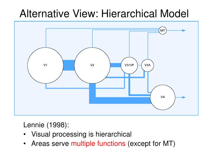 Alternative View: Hierarchical Model