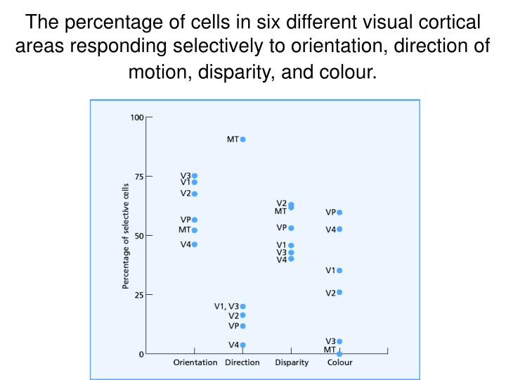 The percentage of cells in six different visual cortical areas responding selectively to orientation, direction of motion, disparity, and colour.