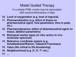 model guided therapy16