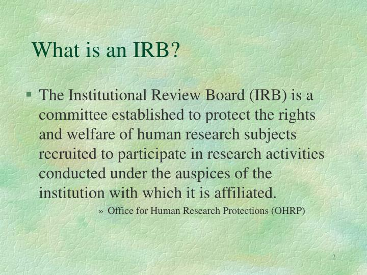 What is an irb