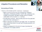 litigation procedures and remedies30