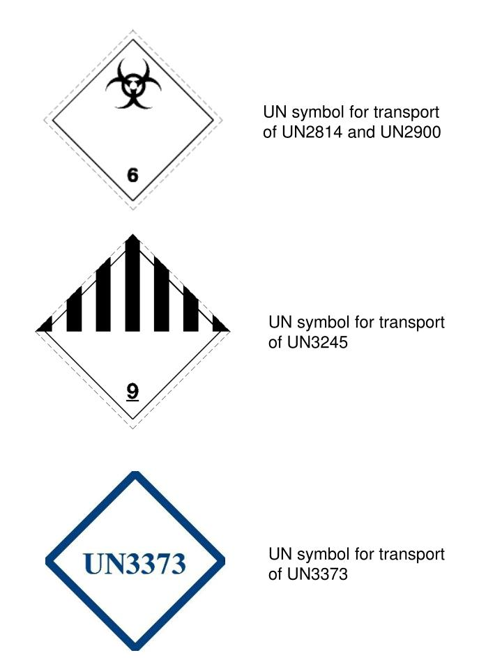 Ppt Un Symbol For Transport Of Un2814 And Un2900 Powerpoint