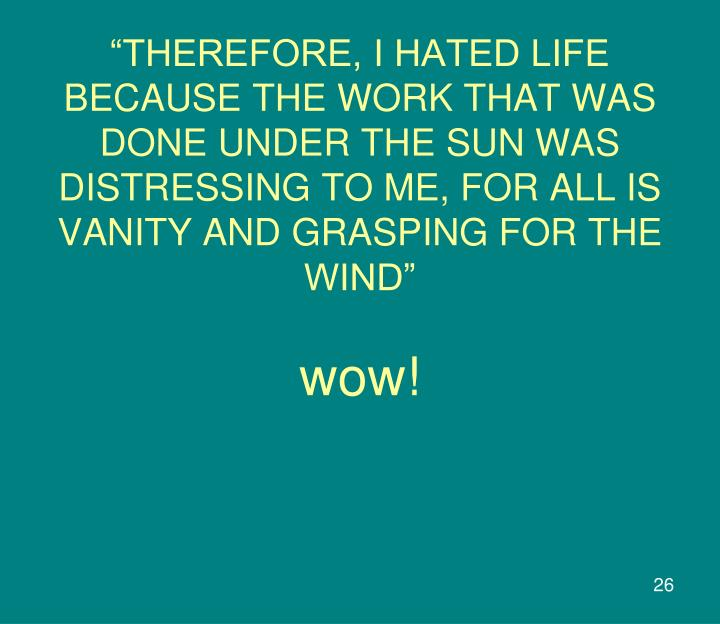 """""""THEREFORE, I HATED LIFE BECAUSE THE WORK THAT WAS DONE UNDER THE SUN WAS DISTRESSING TO ME, FOR ALL IS VANITY AND GRASPING FOR THE WIND"""""""