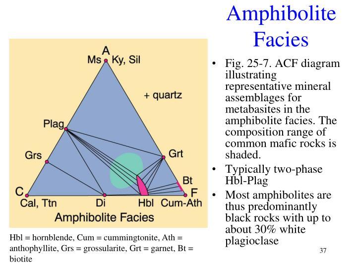 Amphibolite Facies
