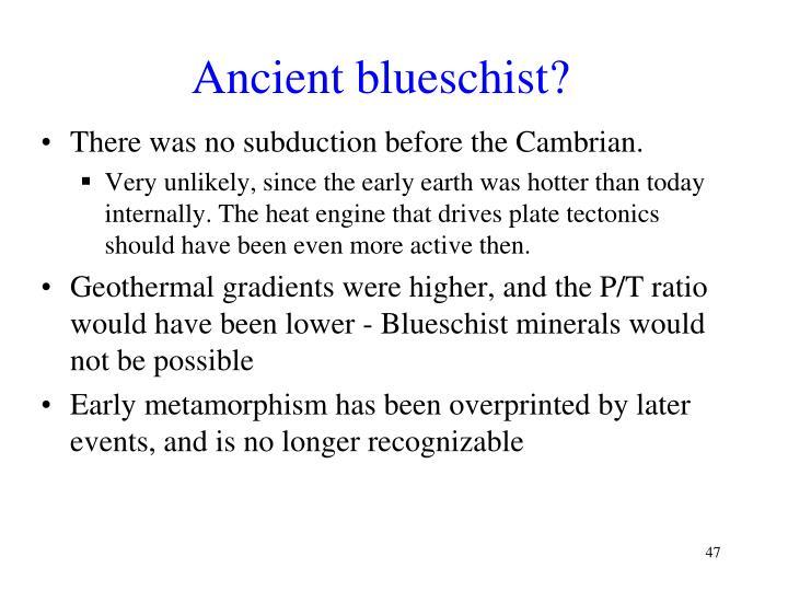 Ancient blueschist?