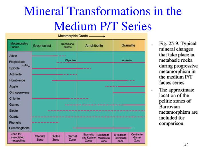 Mineral Transformations in the Medium P/T Series