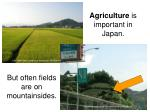 agriculture is important in japan